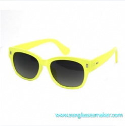 Professional Fashion Sunglasses and Plastic Glasses of Promotion